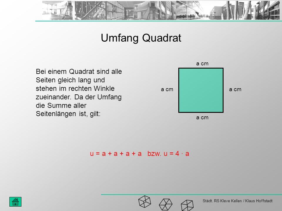 Städt. RS Kleve Kellen / Klaus Hoffstadt Umfang Quadrat a cm Bei einem Quadrat sind alle Seiten gleich lang und stehen im rechten Winkle zueinander. D