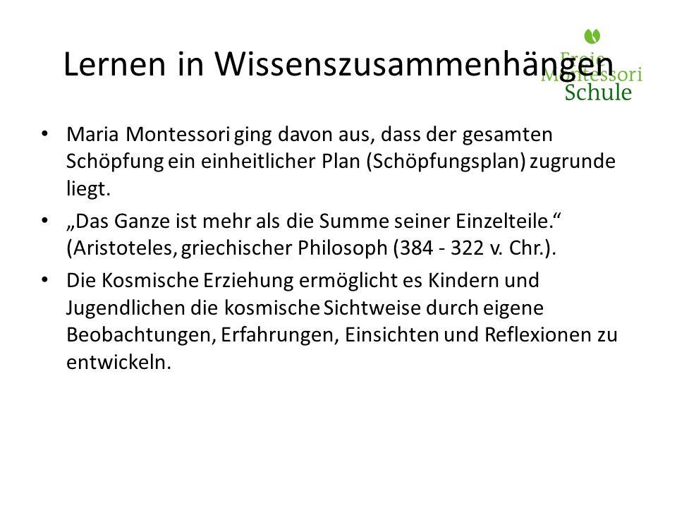 Maria Montessori ging davon aus, dass der gesamten Schöpfung ein einheitlicher Plan (Schöpfungsplan) zugrunde liegt. Das Ganze ist mehr als die Summe