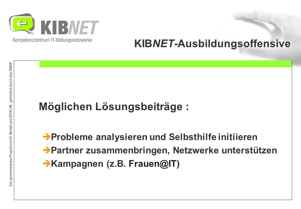 Ein gemeinsames Projekt von IG Metall und BITKOM, gefördert durch das BMBF. KIBNET-Ausbildungsoffensive Möglichen Lösungsbeiträge : Probleme analysier