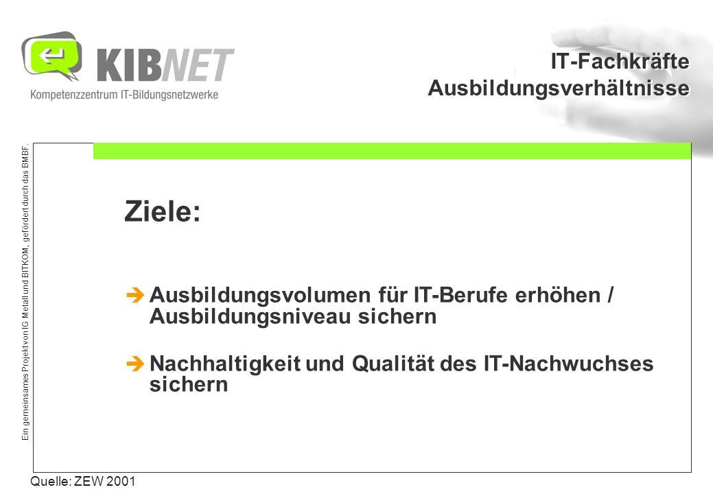 Ein gemeinsames Projekt von IG Metall und BITKOM, gefördert durch das BMBF. IT-Fachkräfte Ausbildungsverhältnisse Quelle: ZEW 2001 Ziele: Ausbildungsv