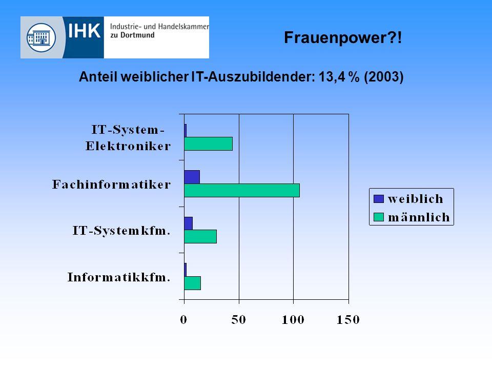 Frauenpower?! Anteil weiblicher IT-Auszubildender: 13,4 % (2003)