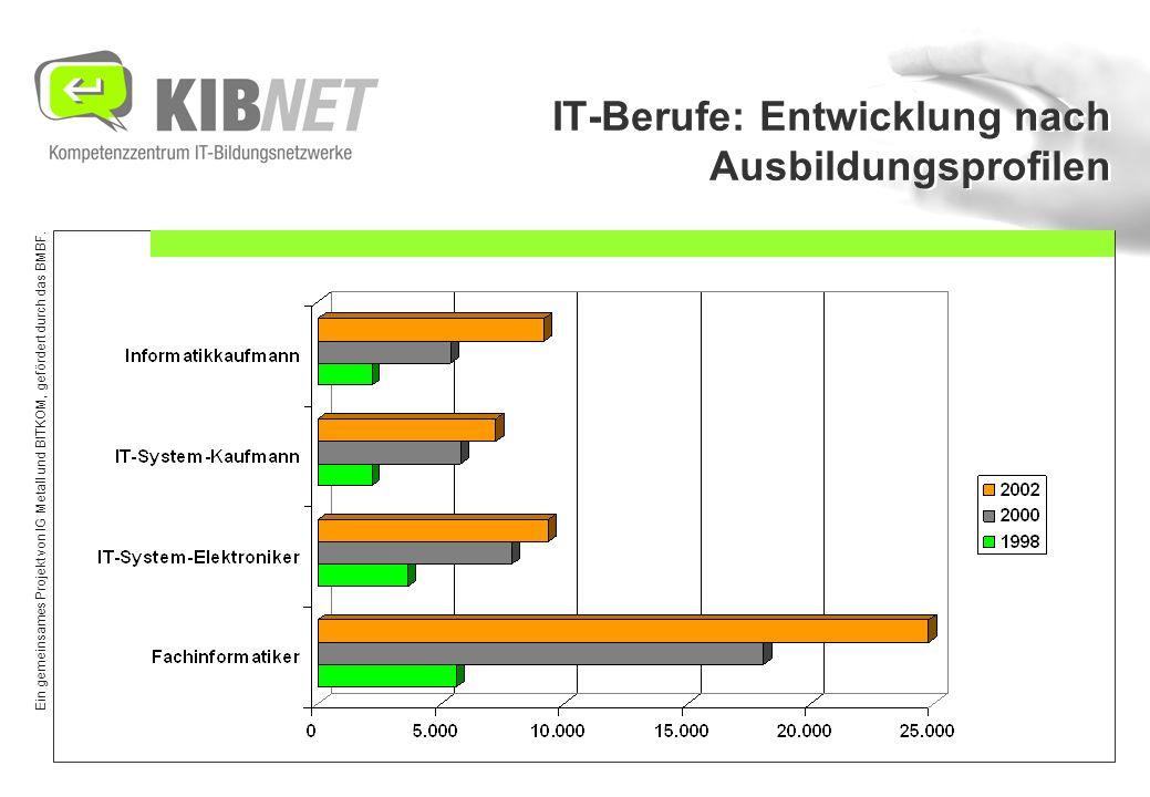 Ein gemeinsames Projekt von IG Metall und BITKOM, gefördert durch das BMBF. IT-Berufe: Entwicklung nach Ausbildungsprofilen