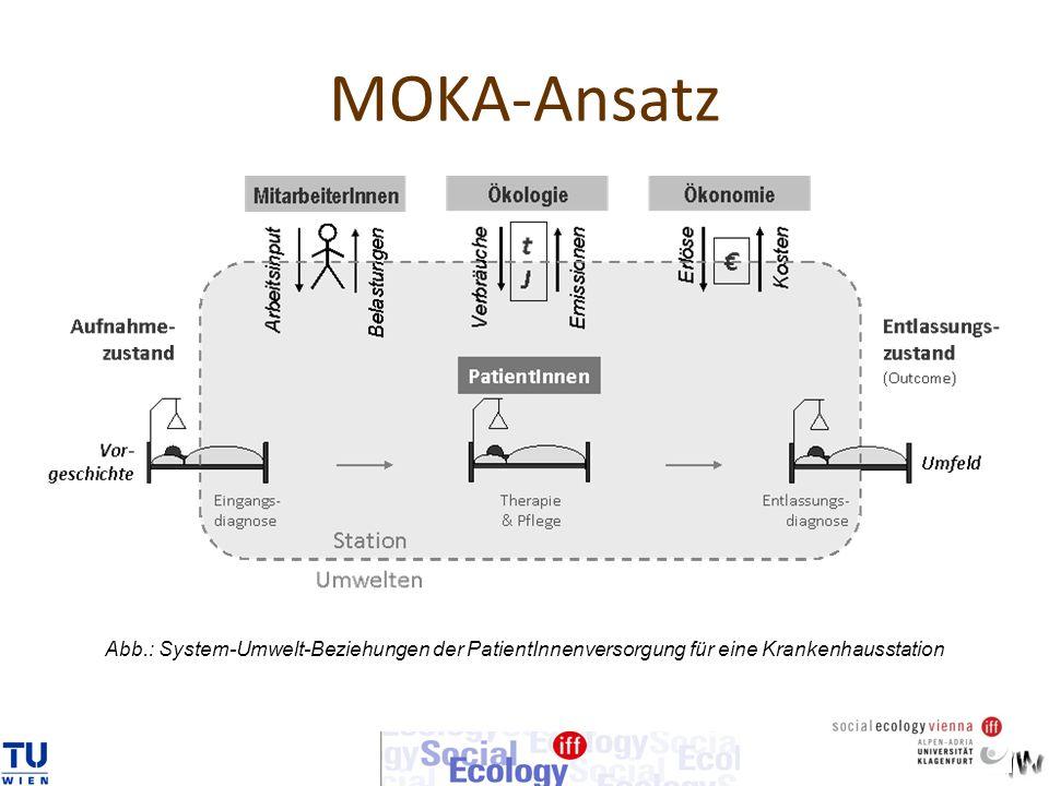 Abb.: System-Umwelt-Beziehungen der PatientInnenversorgung für eine Krankenhausstation MOKA-Ansatz