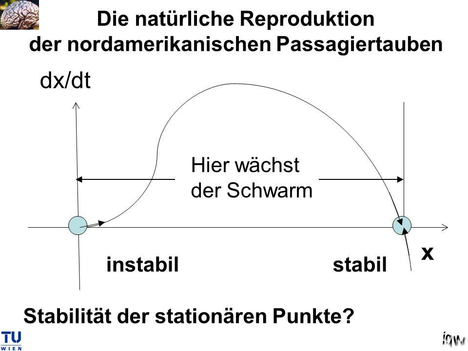 x dx/dt Stabilität der stationären Punkte? Hier wächst der Schwarm Die natürliche Reproduktion der nordamerikanischen Passagiertauben stabilinstabil
