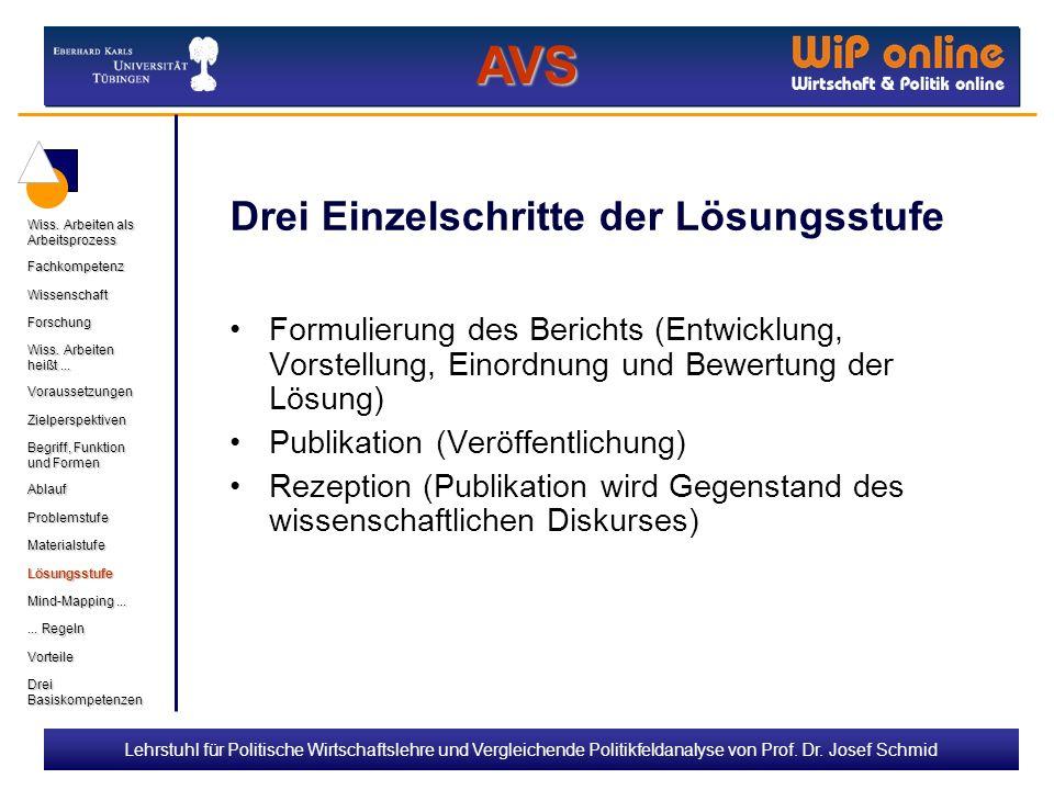 Lehrstuhl für Politische Wirtschaftslehre und Vergleichende Politikfeldanalyse von Prof. Dr. Josef Schmid Drei Einzelschritte der Lösungsstufe Formuli