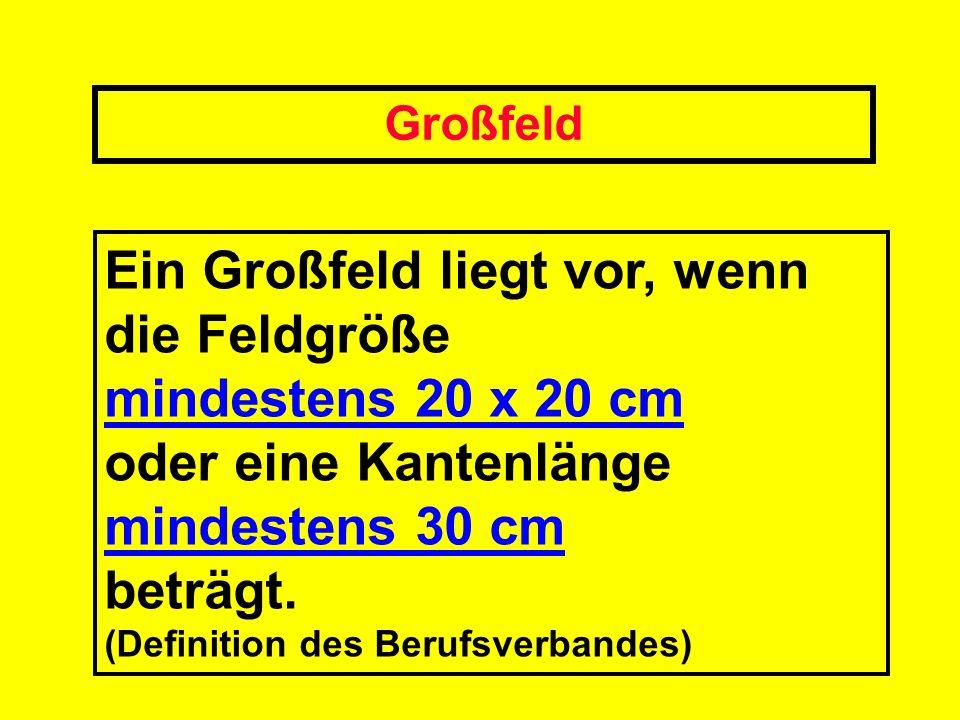 Großfeld Ein Großfeld liegt vor, wenn die Feldgröße mindestens 20 x 20 cm oder eine Kantenlänge mindestens 30 cm beträgt. (Definition des Berufsverban