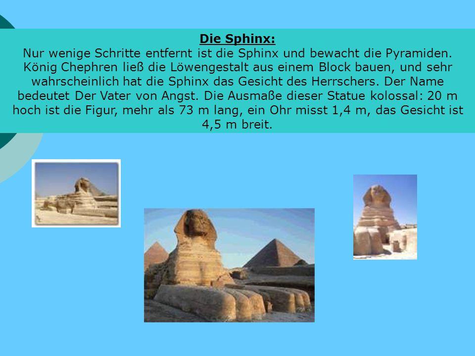 Die Sphinx: Nur wenige Schritte entfernt ist die Sphinx und bewacht die Pyramiden. König Chephren ließ die Löwengestalt aus einem Block bauen, und seh