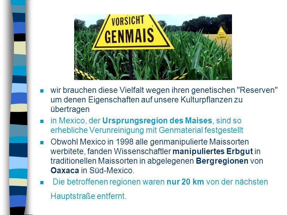 ÖKOLOGICHES n Die bisherigen Erfahrungen mit dem Anbau gentechnisch manipulierten Pflanzen in Europa und anderen Regionen zeigen, dass die Gen-Saaten bereits vielfach außer Kontrolle geraten sind n Ausbreitung von manipulierten Genen in den Ursprungsregionen unserer Kulturpflanzen ist sehr riskant, weil dort viele verwandte Wildarten wachsen