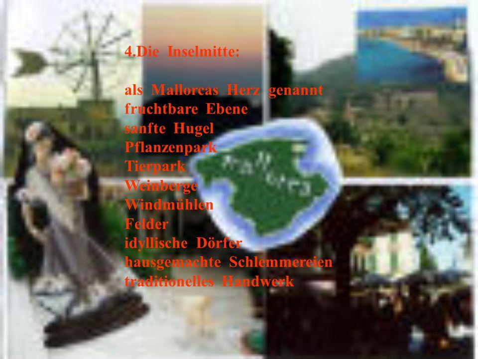4.Die Inselmitte: als Mallorcas Herz genannt fruchtbare Ebene sanfte Hugel Pflanzenpark Tierpark Weinberge Windmühlen Felder idyllische Dörfer hausgemachte Schlemmereien traditionelles Handwerk