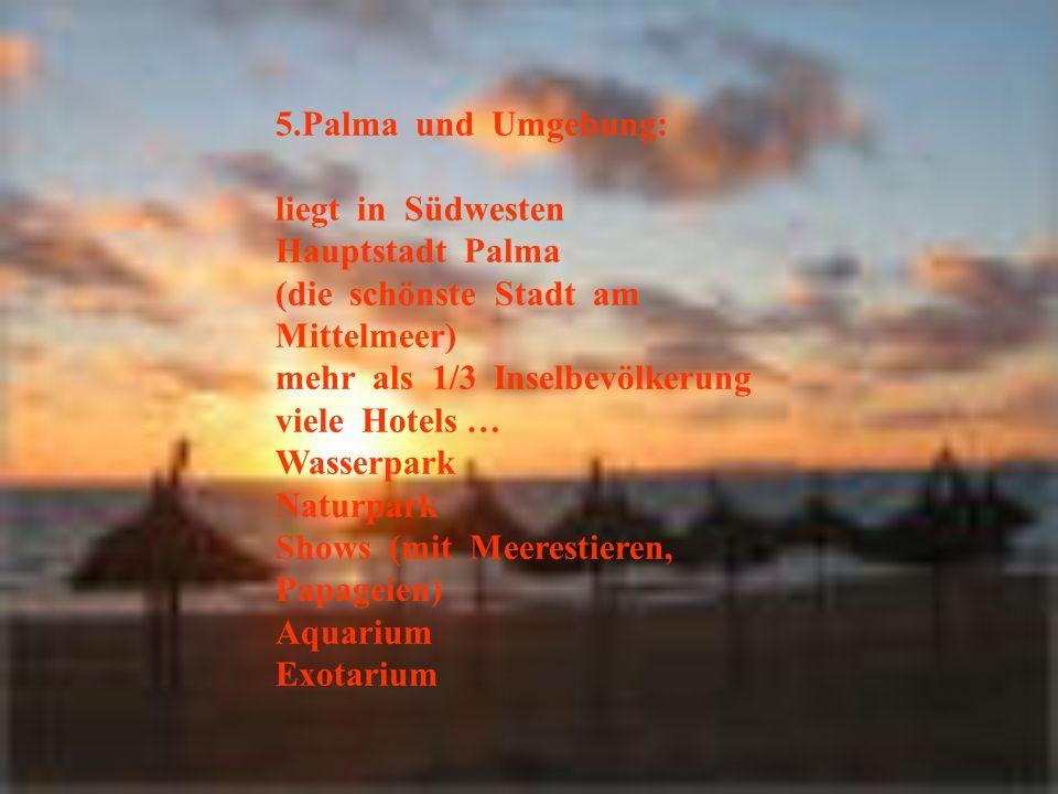 5.Palma und Umgebung: liegt in Südwesten Hauptstadt Palma (die schönste Stadt am Mittelmeer) mehr als 1/3 Inselbevölkerung viele Hotels … Wasserpark Naturpark Shows (mit Meerestieren, Papageien) Aquarium Exotarium