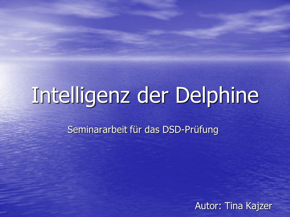 Intelligenz der Delphine Seminararbeit für das DSD-Prüfung Seminararbeit für das DSD-Prüfung Autor: Tina Kajzer Autor: Tina Kajzer