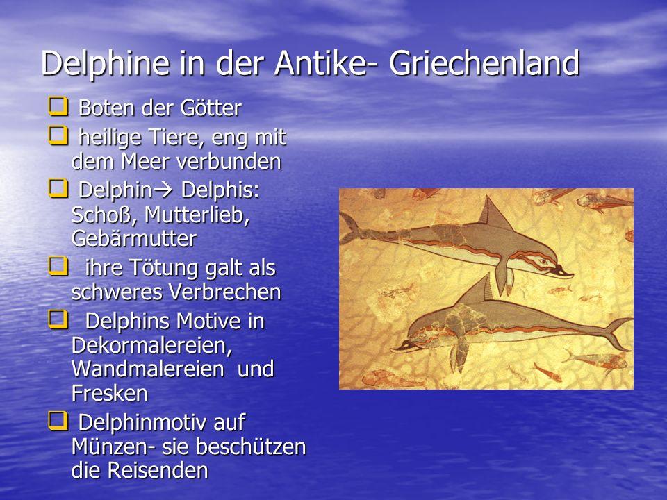Delphine in der Antike- Griechenland Boten der Götter Boten der Götter heilige Tiere, eng mit dem Meer verbunden heilige Tiere, eng mit dem Meer verbu