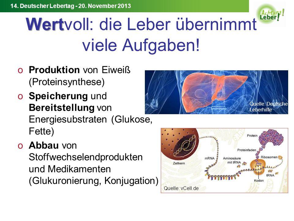 14.Deutscher Lebertag - 20.