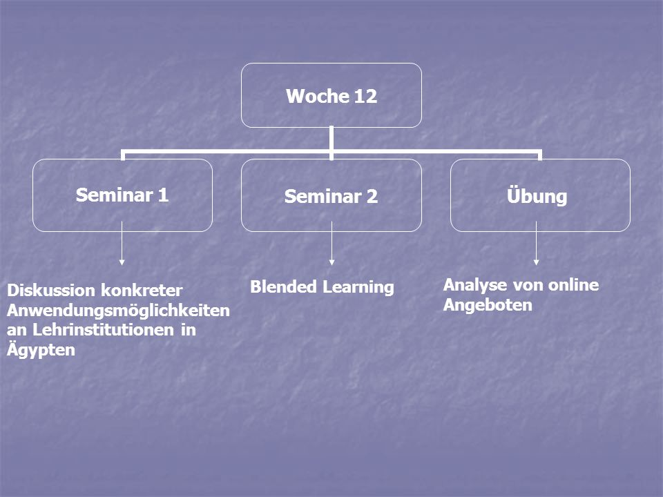 Woche 12 Seminar 1Seminar 2Übung Diskussion konkreter Anwendungsmöglichkeiten an Lehrinstitutionen in Ägypten Blended Learning Analyse von online Ange