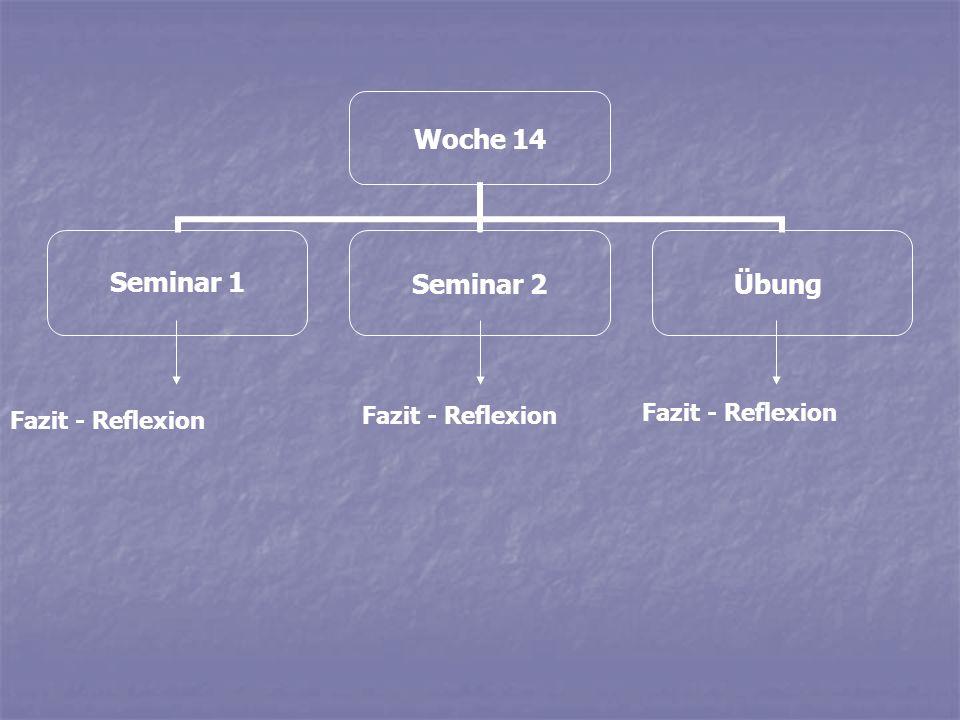 Woche 14 Seminar 1Seminar 2Übung Fazit - Reflexion Fazit - Reflexion Fazit - Reflexion