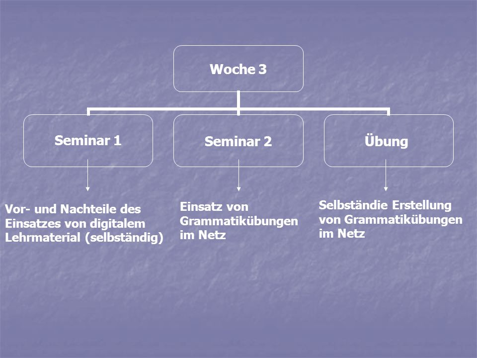 Woche 3 Seminar 1Seminar 2Übung Vor- und Nachteile des Einsatzes von digitalem Lehrmaterial (selbständig) Einsatz von Grammatikübungen im Netz Selbstä