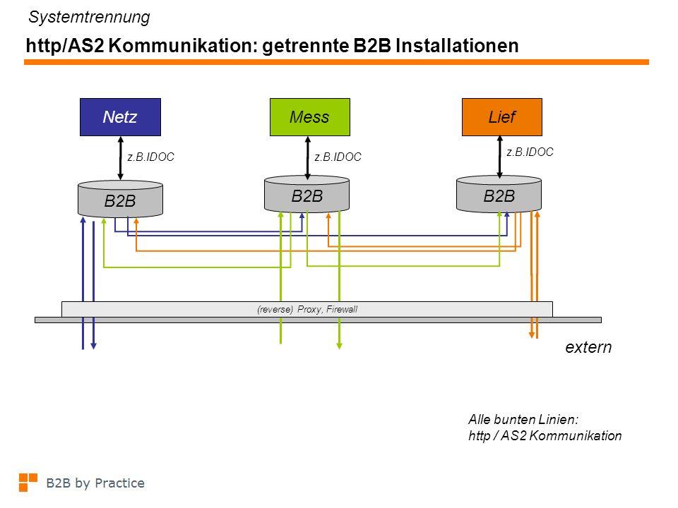 http/AS2 Kommunikation: eine B2B Installation mit Mandanten z.B.IDOC NetzMessLief z.B.IDOC B2B Mandanten Systemtrennung Alle bunten Linien: http / AS2 Kommunikation extern (reverse) Proxy, Firewall