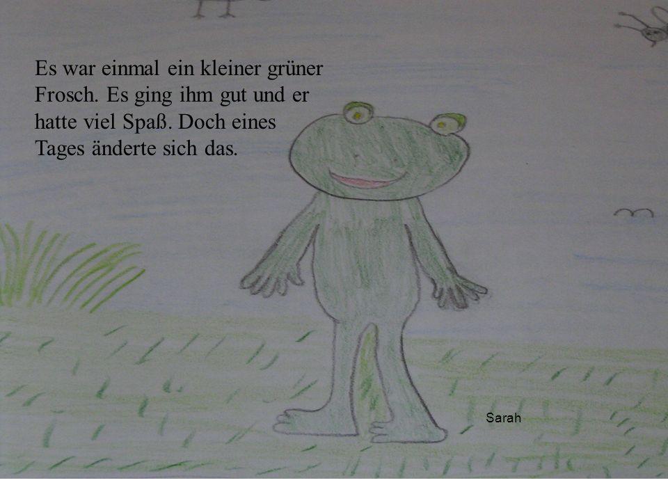Es war einmal ein kleiner grüner Frosch. Es ging ihm gut und er hatte viel Spaß. Doch eines Tages änderte sich das.