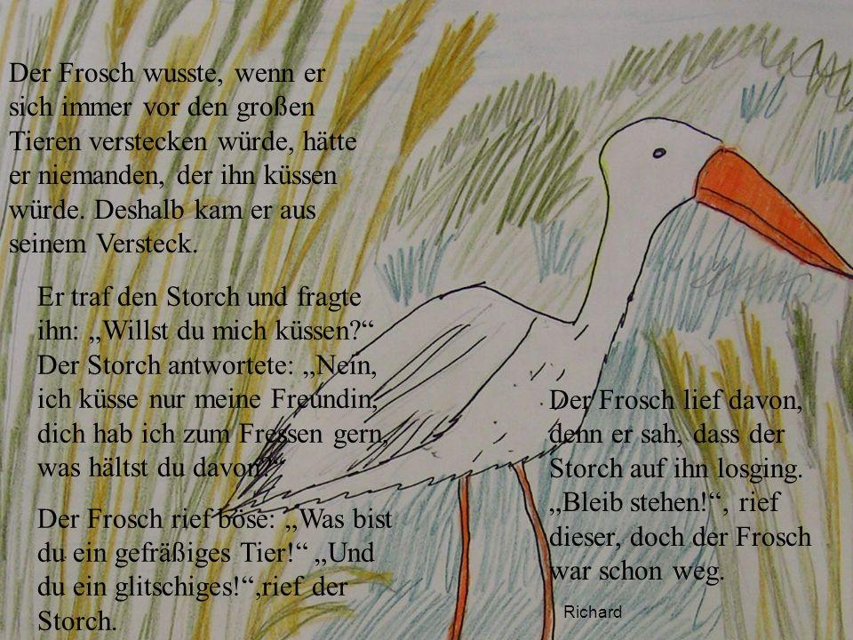 Richard Der Frosch wusste, wenn er sich immer vor den großen Tieren verstecken würde, hätte er niemanden, der ihn küssen würde. Deshalb kam er aus sei