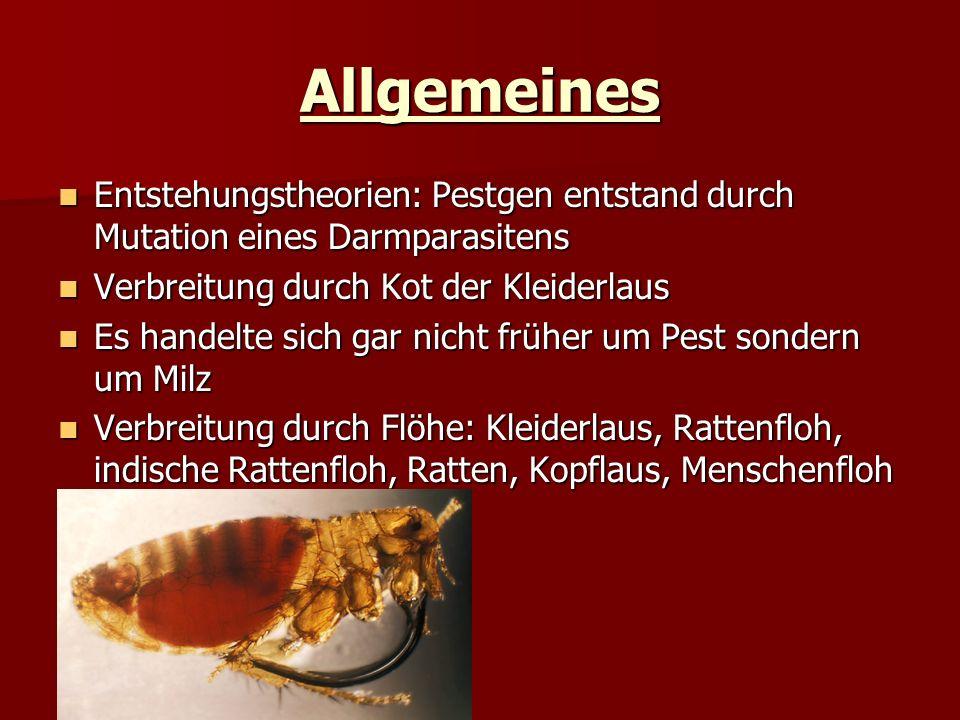 Allgemeines Entstehungstheorien: Pestgen entstand durch Mutation eines Darmparasitens Entstehungstheorien: Pestgen entstand durch Mutation eines Darmp