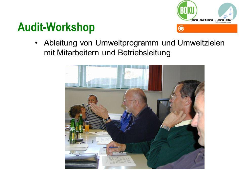 Audit-Workshop Ableitung von Umweltprogramm und Umweltzielen mit Mitarbeitern und Betriebsleitung