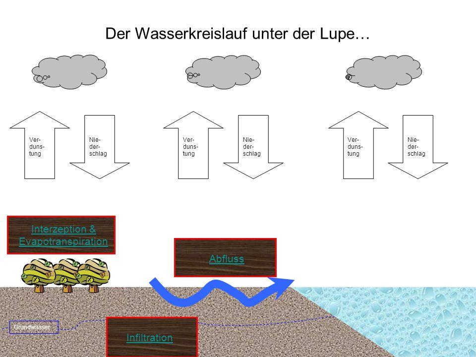 Niederschlag Grundwasserabfluss Hangwasserabfluss Oberflächenabfluss Fliessgewässer Feuchtefront Wasserkreislauf Infiltration