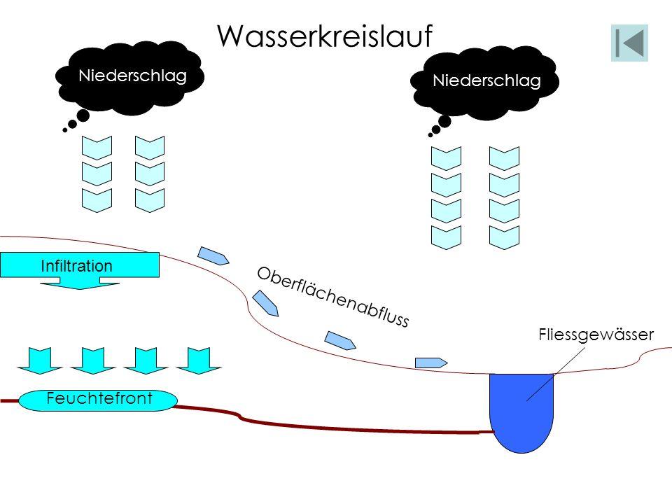 Niederschlag Fliessgewässer Wasserkreislauf Infiltration Feuchtefront Oberflächenabfluss