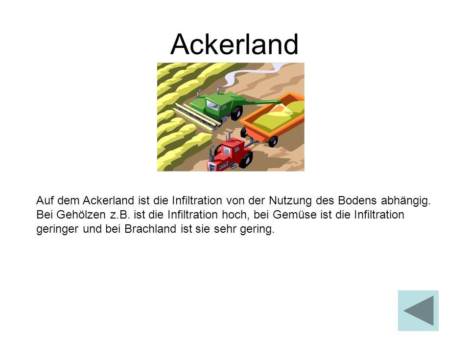 Ackerland Auf dem Ackerland ist die Infiltration von der Nutzung des Bodens abhängig. Bei Gehölzen z.B. ist die Infiltration hoch, bei Gemüse ist die