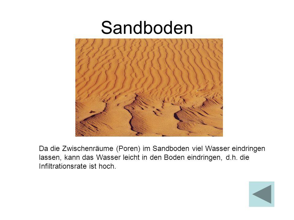 Sandboden Da die Zwischenräume (Poren) im Sandboden viel Wasser eindringen lassen, kann das Wasser leicht in den Boden eindringen, d.h. die Infiltrati