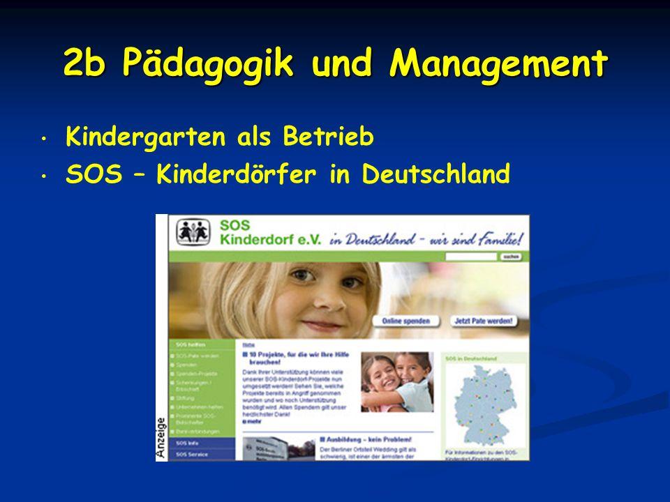 2b Pädagogik und Management Kindergarten als Betrieb SOS – Kinderdörfer in Deutschland