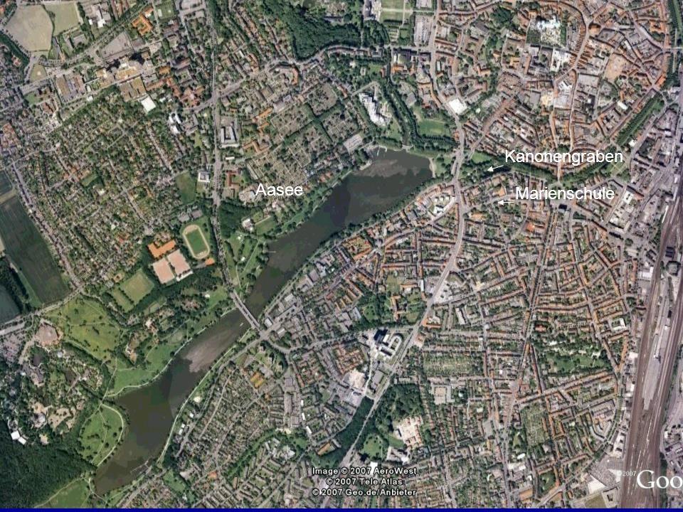 Ein Projektbeispiel: Ökologische und hydrochemische Untersuchungen am Aasee und Kanonengraben