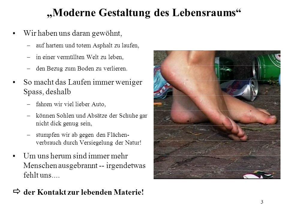 3 Moderne Gestaltung des Lebensraums Wir haben uns daran gewöhnt, –auf hartem und totem Asphalt zu laufen, –in einer vermüllten Welt zu leben, –den Be
