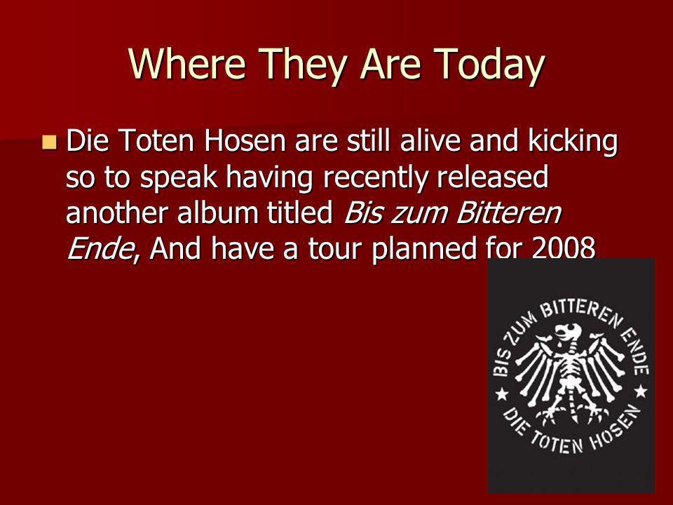 Achievements Die Toten Hosen is originally a German band that has obtained international status.