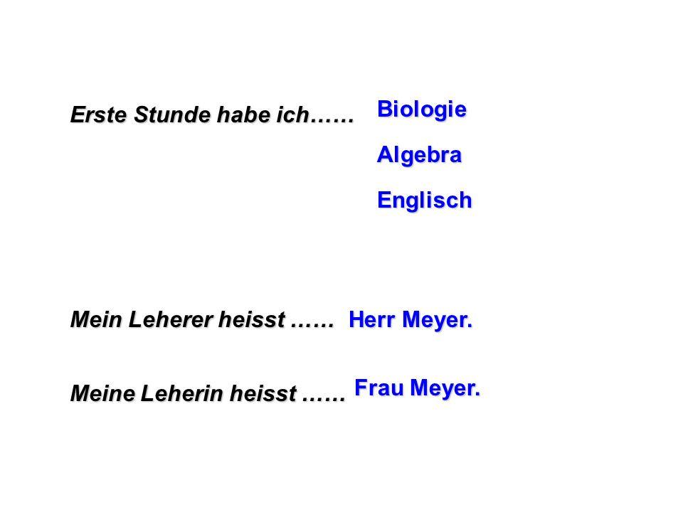 Erste Stunde habe ich…… Biologie Algebra Englisch Mein Leherer heisst …… Herr Meyer. Meine Leherin heisst …… Frau Meyer.