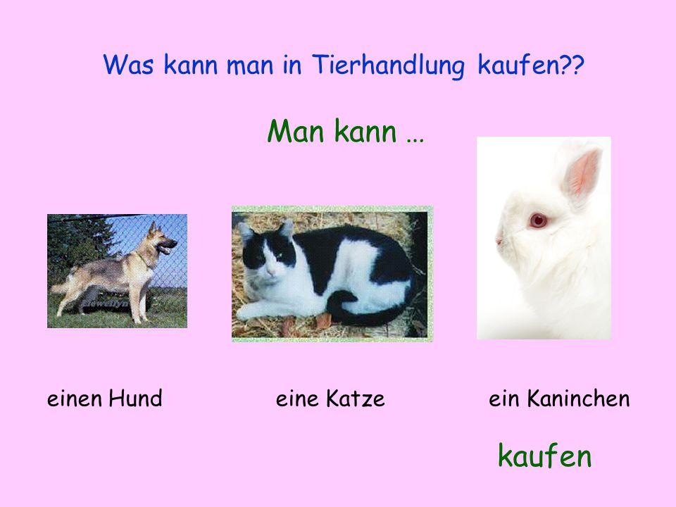 Was kann man in Tierhandlung kaufen?? Man kann … kaufen einen Hundeine Katzeein Kaninchen