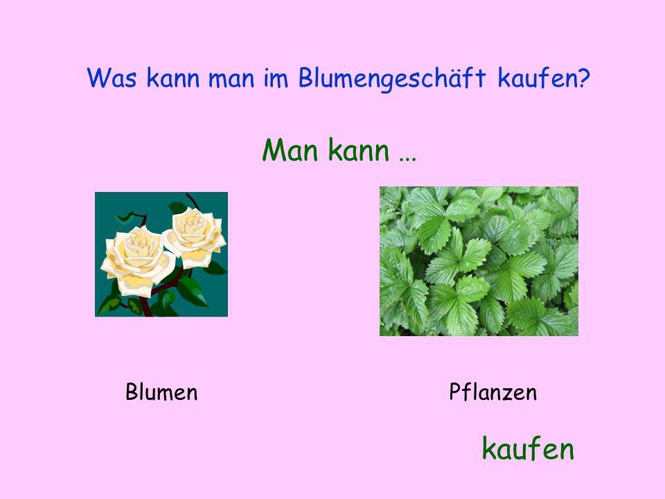 Was kann man im Blumengeschäft kaufen? Man kann … kaufen BlumenPflanzen