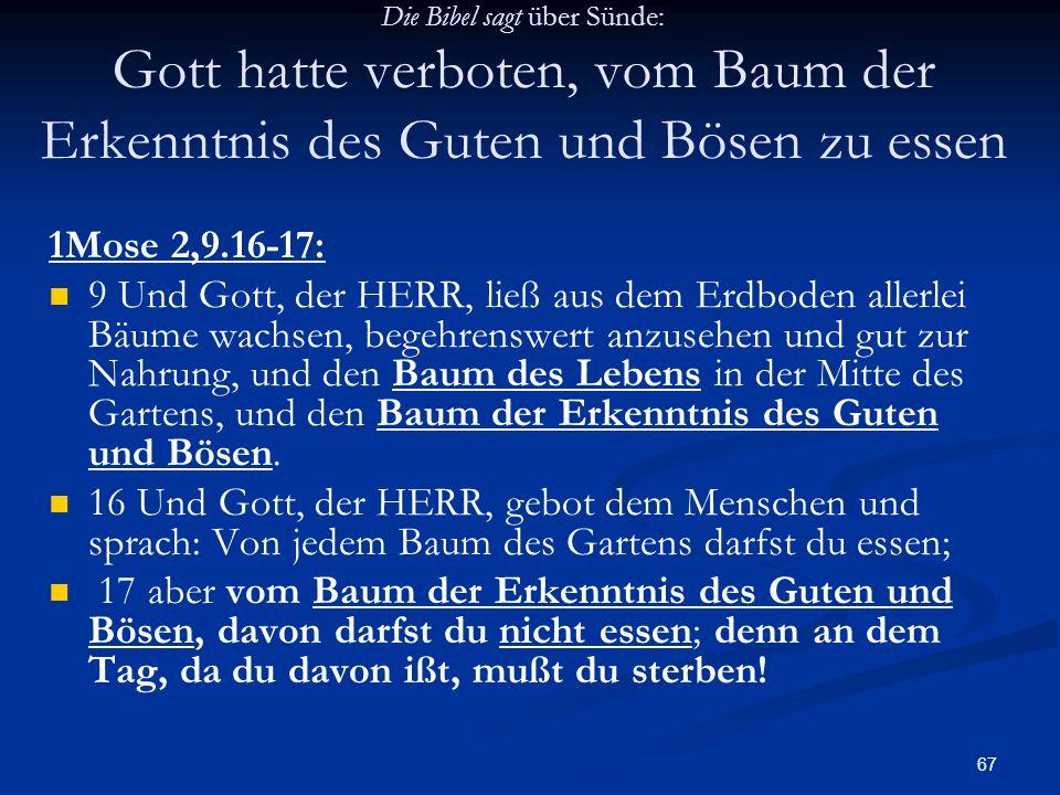 67 Die Bibel sagt über Sünde: Gott hatte verboten, vom Baum der Erkenntnis des Guten und Bösen zu essen 1Mose 2,9.16-17: 9 Und Gott, der HERR, ließ au