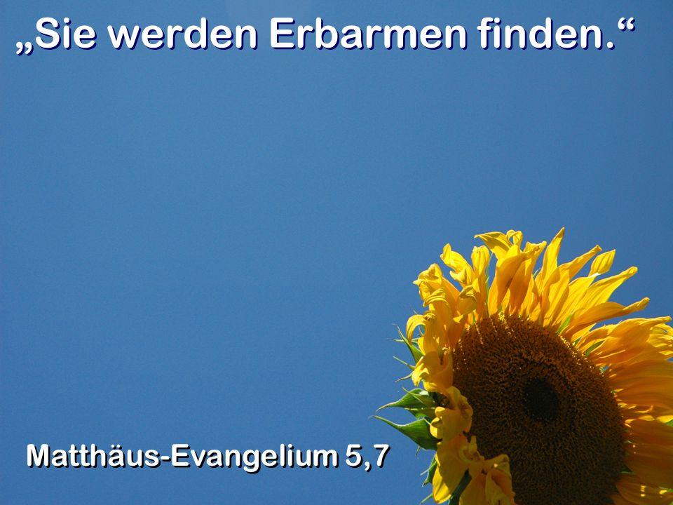Sie werden Erbarmen finden. Matthäus-Evangelium 5,7