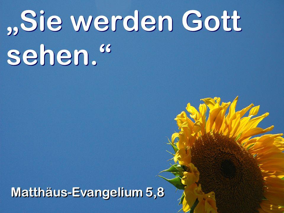 Sie werden Gott sehen. Matthäus-Evangelium 5,8