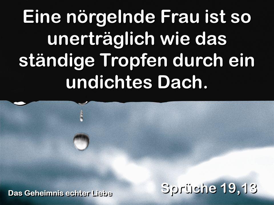 Das Geheimnis echter Liebe Sprüche 19,13 Eine nörgelnde Frau ist so unerträglich wie das ständige Tropfen durch ein undichtes Dach.
