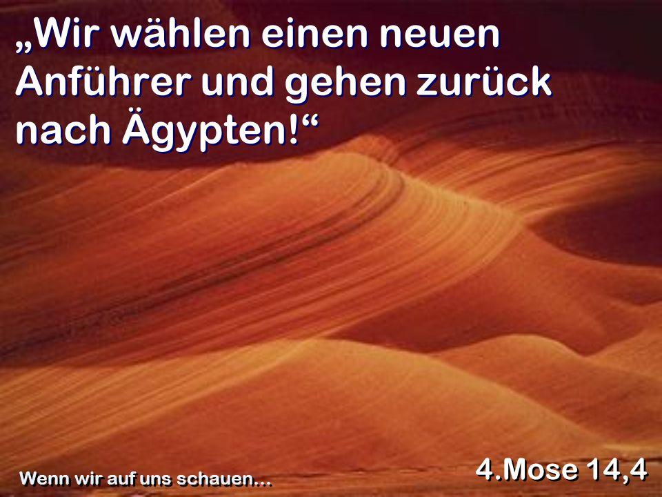 Wir wählen einen neuen Anführer und gehen zurück nach Ägypten! 4.Mose 14,4 Wenn wir auf uns schauen…