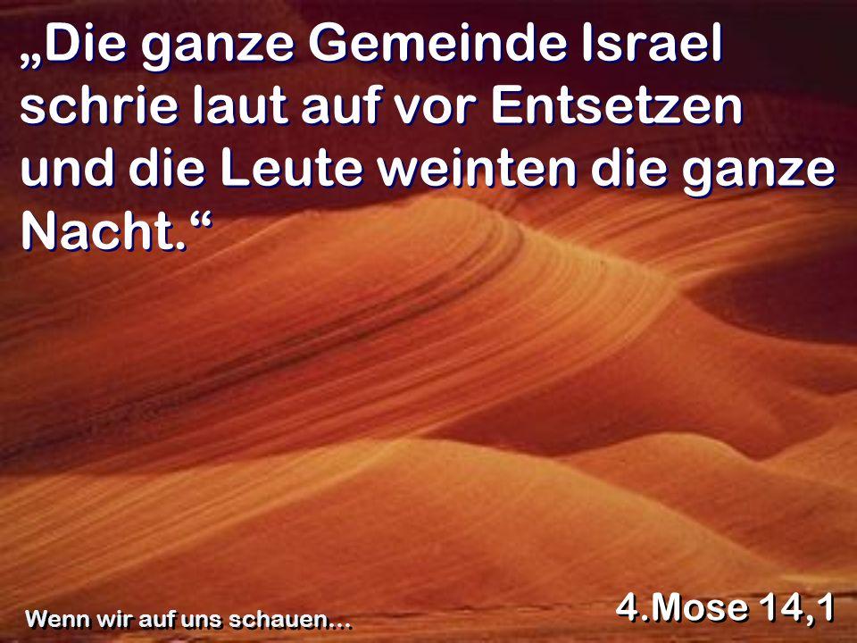 Die ganze Gemeinde Israel schrie laut auf vor Entsetzen und die Leute weinten die ganze Nacht. 4.Mose 14,1 Wenn wir auf uns schauen…
