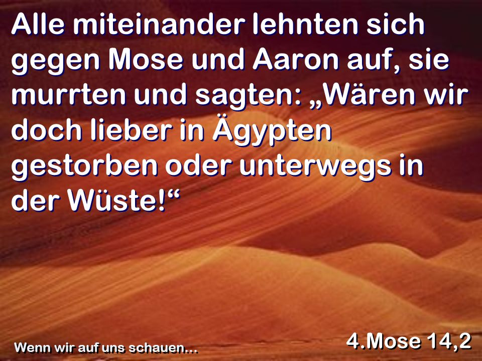 Alle miteinander lehnten sich gegen Mose und Aaron auf, sie murrten und sagten: Wären wir doch lieber in Ägypten gestorben oder unterwegs in der Wüste