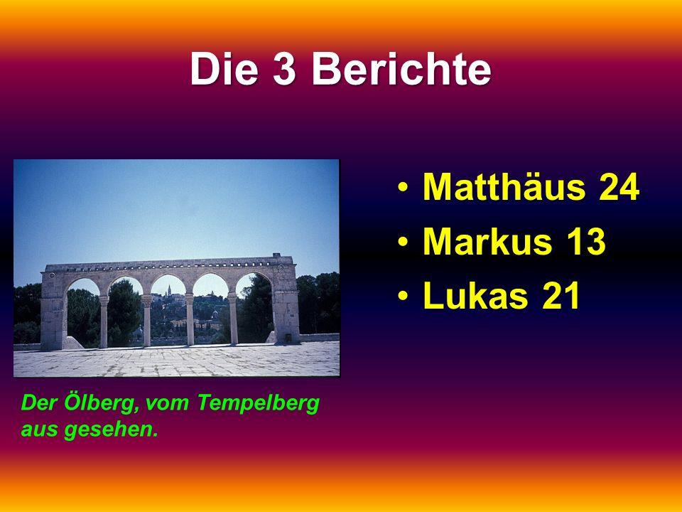 Die 3 Berichte Matthäus 24Matthäus 24 Markus 13Markus 13 Lukas 21Lukas 21 Der Ölberg, vom Tempelberg aus gesehen.