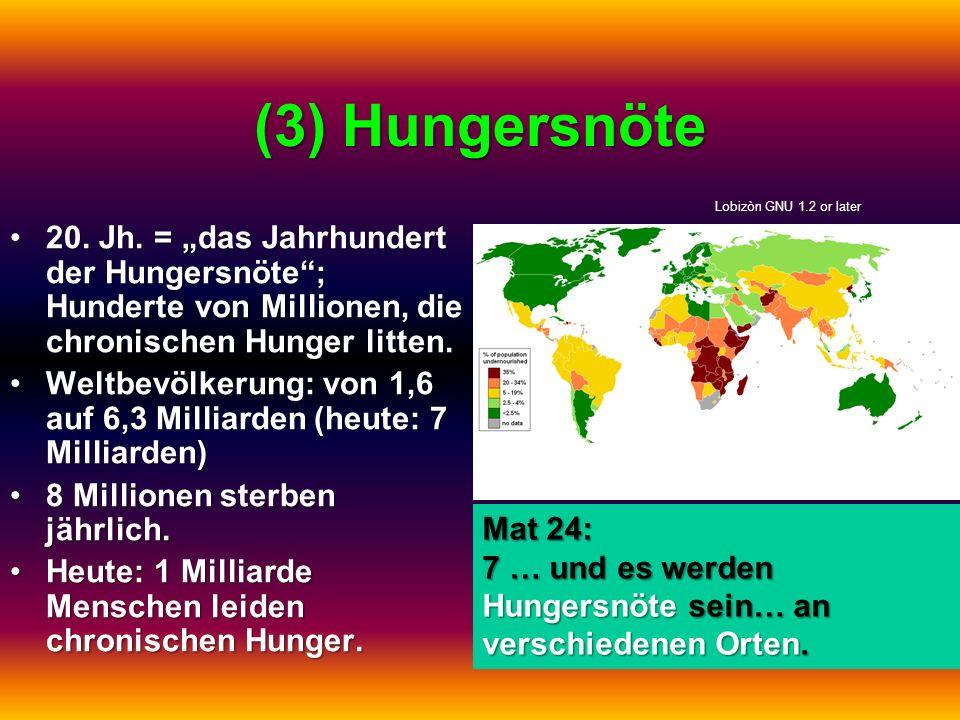 (3) Hungersnöte 20. Jh. = das Jahrhundert der Hungersnöte; Hunderte von Millionen, die chronischen Hunger litten.20. Jh. = das Jahrhundert der Hungers