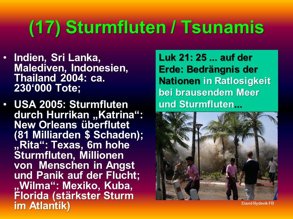 (17) Sturmfluten / Tsunamis Indien, Sri Lanka, Malediven, Indonesien, Thailand 2004: ca. 230000 Tote;Indien, Sri Lanka, Malediven, Indonesien, Thailan