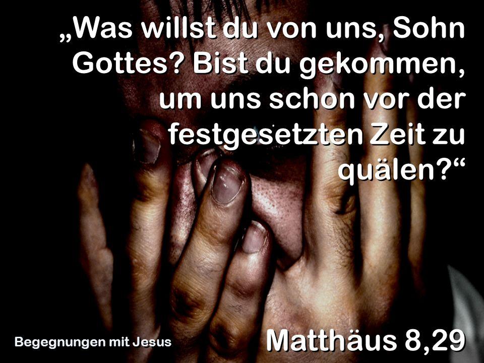 Was willst du von uns, Sohn Gottes? Bist du gekommen, um uns schon vor der festgesetzten Zeit zu quälen? Matthäus 8,29 Begegnungen mit Jesus