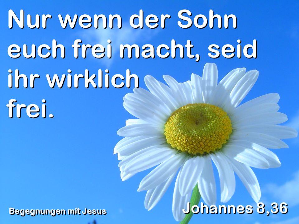Nur wenn der Sohn euch frei macht, seid ihr wirklich frei. Johannes 8,36 Begegnungen mit Jesus