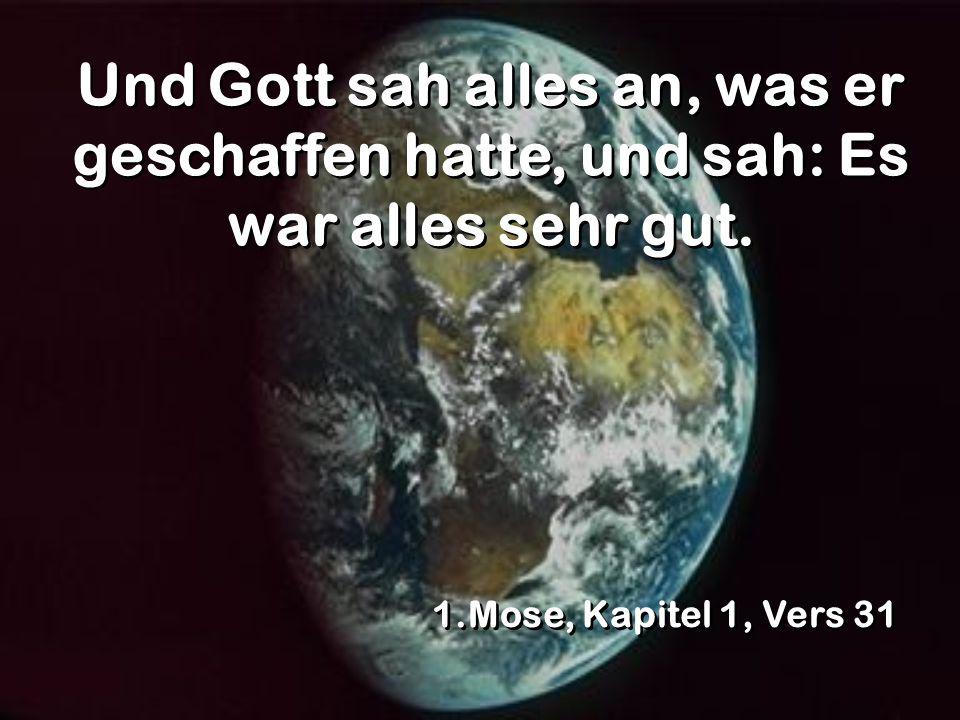 Und Gott sah alles an, was er geschaffen hatte, und sah: Es war alles sehr gut. 1.Mose, Kapitel 1, Vers 31