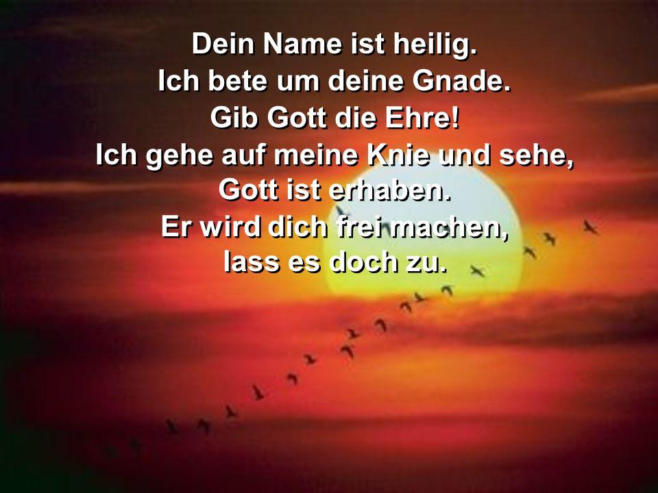 Dein Name ist heilig. Ich bete um deine Gnade. Gib Gott die Ehre! Ich gehe auf meine Knie und sehe, Gott ist erhaben. Er wird dich frei machen, lass e